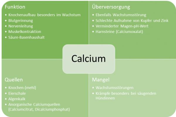 Steckbrief-Calcium